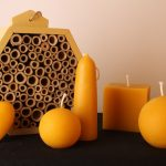 Beeswax Shapes