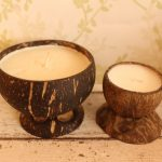 Coconut Shell Candles & Stand